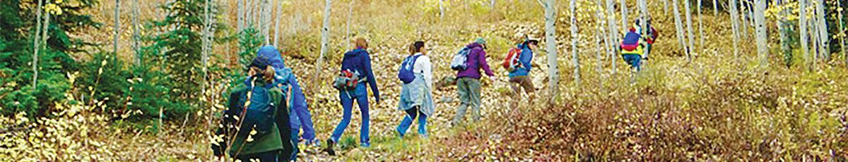People hiking through the trees in fall