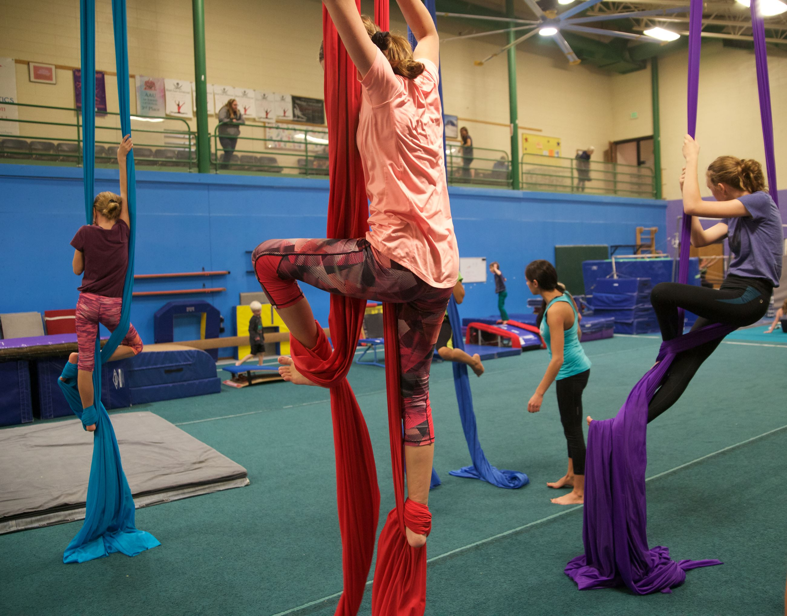 Girls Practicing Aerial Fabric Exercises